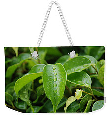 Weekender Tote Bag featuring the photograph Wet Bushes by Rob Hans