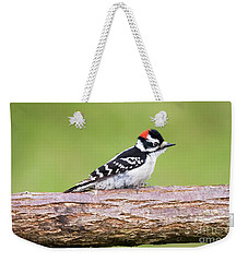 Weekender Tote Bag featuring the photograph Wet Downy Woodpecker  by Ricky L Jones