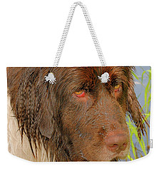 Weekender Tote Bag featuring the photograph Wet Newfie by Debbie Stahre