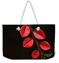 Wet Scarlet Weekender Tote Bag by Connie Handscomb
