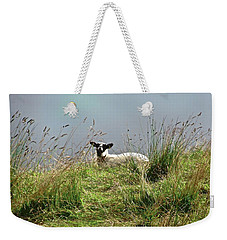 Wet Sheep Weekender Tote Bag