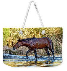 Wet Wild Horse Walking In Salt River Weekender Tote Bag