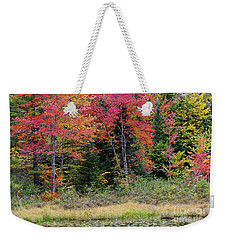 Weekender Tote Bag featuring the photograph Wetland Fall Foliage by Alan L Graham