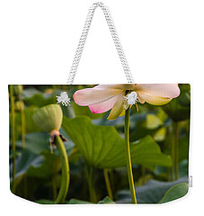 Wetland Flowers Weekender Tote Bag