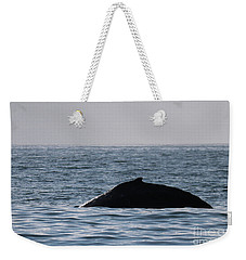 Weekender Tote Bag featuring the photograph Whale Fin by Suzanne Luft