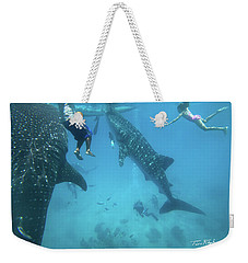 Whale Sharks Weekender Tote Bag by Tim Fitzharris