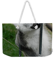 What? Weekender Tote Bag