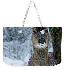 Weekender Tote Bag featuring the photograph What Is This - 365-280 by Inge Riis McDonald