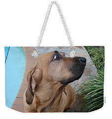What Was That Weekender Tote Bag by Val Oconnor