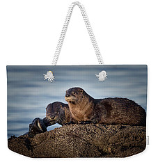 Weekender Tote Bag featuring the photograph Whats For Dinner by Randy Hall