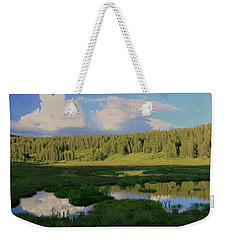What's Left Of A Lake Weekender Tote Bag by Sean Sarsfield