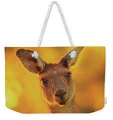 Weekender Tote Bag featuring the photograph What's Up, Yanchep National Park by Dave Catley