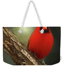 Weekender Tote Bag featuring the photograph When Angels Are Near by Darren Fisher