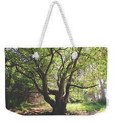Weekender Tote Bag featuring the photograph When You Need Shelter by Laurie Search