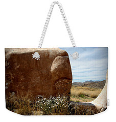 Weekender Tote Bag featuring the photograph Where Have All The Flowers Gone by Joe Kozlowski