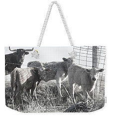 Weekender Tote Bag featuring the photograph Where Is Our Dinner by Toni Hopper