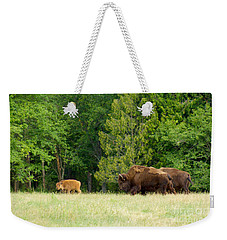 Where The Buffalo Roam Weekender Tote Bag by Sean Griffin