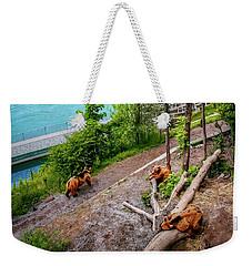 Where's Goldilocks? Bern Switzerland  Weekender Tote Bag