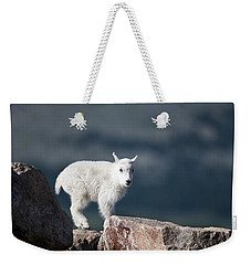 Weekender Tote Bag featuring the photograph Where's Mom? by Gary Lengyel