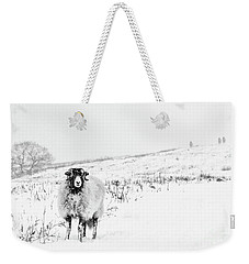 Which Way Is South? Weekender Tote Bag by Janet Burdon