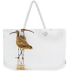 Whimbrel Sandpiper On The Beach Weekender Tote Bag