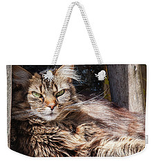 Weekender Tote Bag featuring the photograph Whiskers by Geoff Smith
