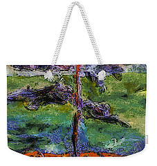 Weekender Tote Bag featuring the photograph Whispers Too by Claire Bull