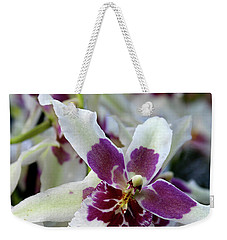 Weekender Tote Bag featuring the photograph Purple And White Orchid by Melinda Blackman