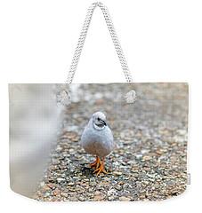 White Bird Sneaking Through Weekender Tote Bag