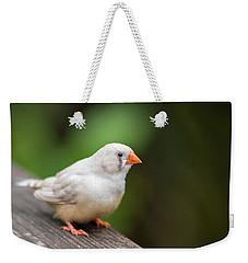 White Bird Standing On Deck Weekender Tote Bag