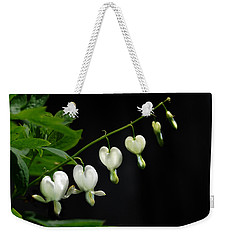 Weekender Tote Bag featuring the photograph White Bleeding Hearts by Susan Capuano