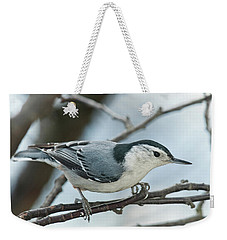 Weekender Tote Bag featuring the photograph White Breasted Nuthatch 2017 2 by Lara Ellis