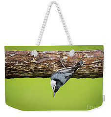 Weekender Tote Bag featuring the photograph White-breasted Nuthatches by Ricky L Jones