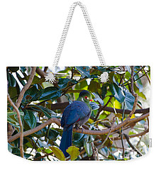 Weekender Tote Bag featuring the photograph White-cheeked Turaco by Donna Brown