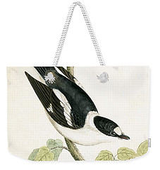 White Collared Flycatcher Weekender Tote Bag by English School