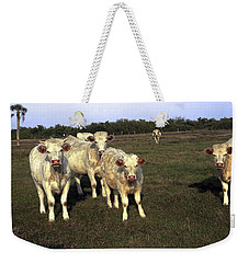 Weekender Tote Bag featuring the photograph White Cows by Sally Weigand