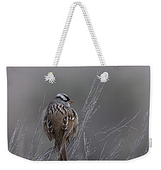 White-crowned Sparrow Weekender Tote Bag