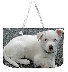 White Dog Blue Eyes Weekender Tote Bag