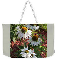 Weekender Tote Bag featuring the photograph White Echinacea In Pastel by Suzanne Gaff