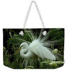 White Egret Displaying Weekender Tote Bag by Myrna Bradshaw
