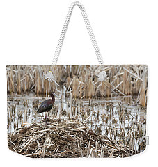 White-faced Ibis 2017-1 Weekender Tote Bag by Thomas Young