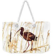 Weekender Tote Bag featuring the photograph White Faced Ibis In Reeds by Robert Frederick