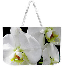 Weekender Tote Bag featuring the photograph White Orchid by Melinda Blackman
