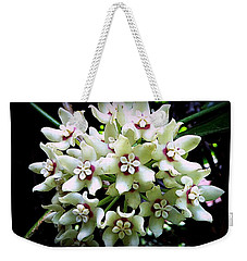 White Flowers Of Paleaku Gardens Weekender Tote Bag