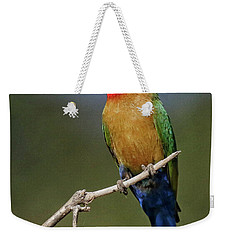 White Fronted Bee-eater Weekender Tote Bag by Myrna Bradshaw