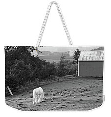 White Horse, New York Weekender Tote Bag