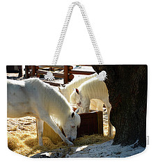 Weekender Tote Bag featuring the photograph White Horses Feeding by David Lee Thompson