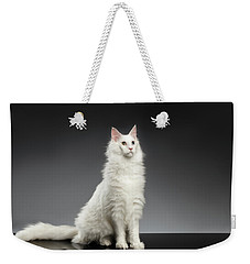 White Huge Maine Coon Cat On Gray Background Weekender Tote Bag