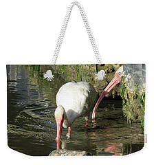 Weekender Tote Bag featuring the photograph White Ibis Couple by George Randy Bass