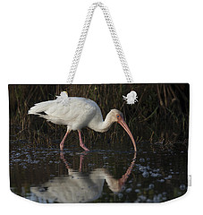 White Ibis Feeding In Morning Light Weekender Tote Bag